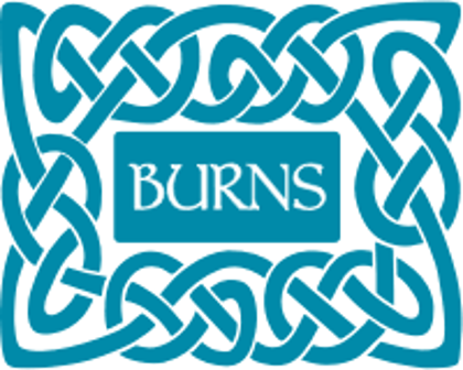Picture for manufacturer Burns
